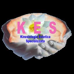 kinesiologiaestetica.com